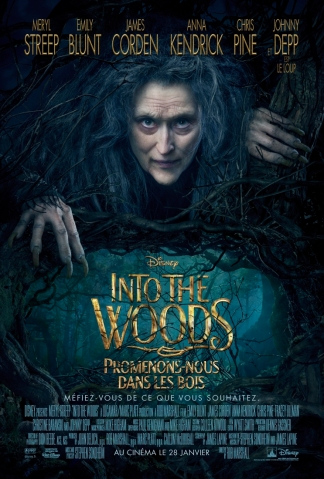 into-the-woods-affiche-france