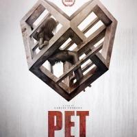 [CRITIQUE] Pet